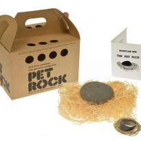 Rockinthebox Pet Rock