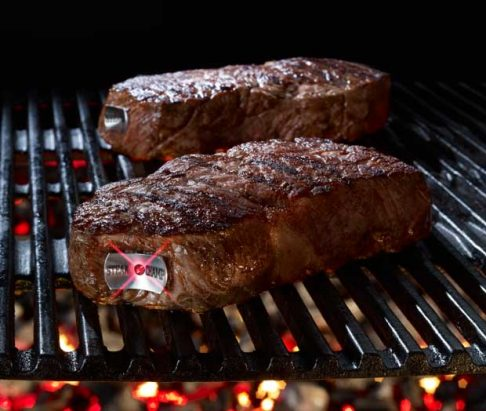 SteakChamp The Ultimate Steak Thermometer