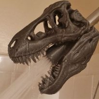 T-Rex Shower Head